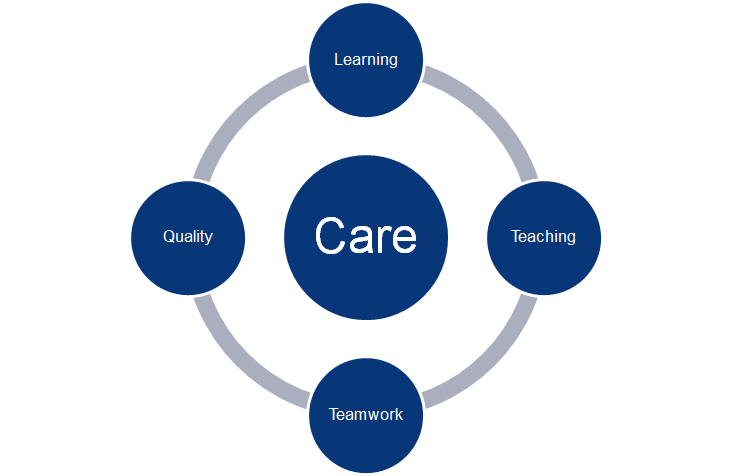 Care Learning Teaching Teamwork Quality